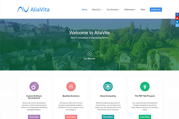AliaVita Engineering