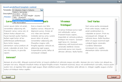 screenshot of TinyMCE content templates browser